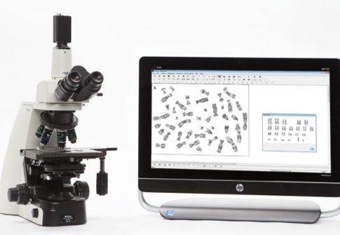 MetaClass-is-a-Karyotyping-and-FISH-modular-system
